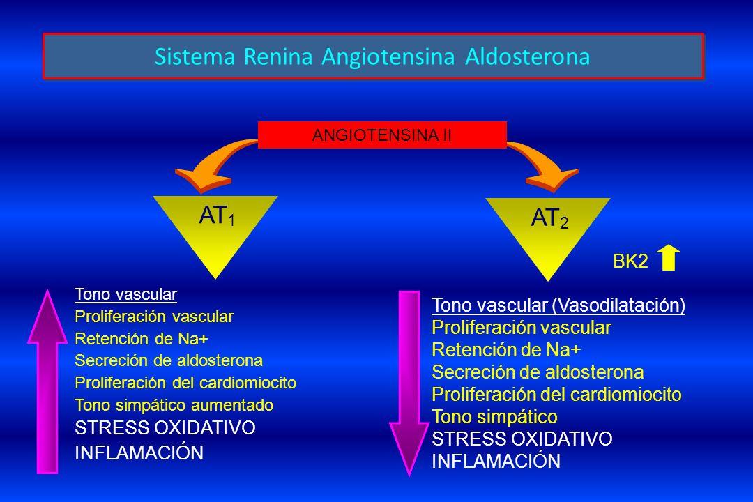Sistema Renina Angiotensina Aldosterona