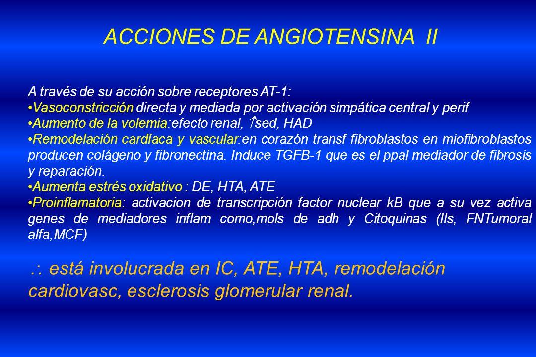 ACCIONES DE ANGIOTENSINA II
