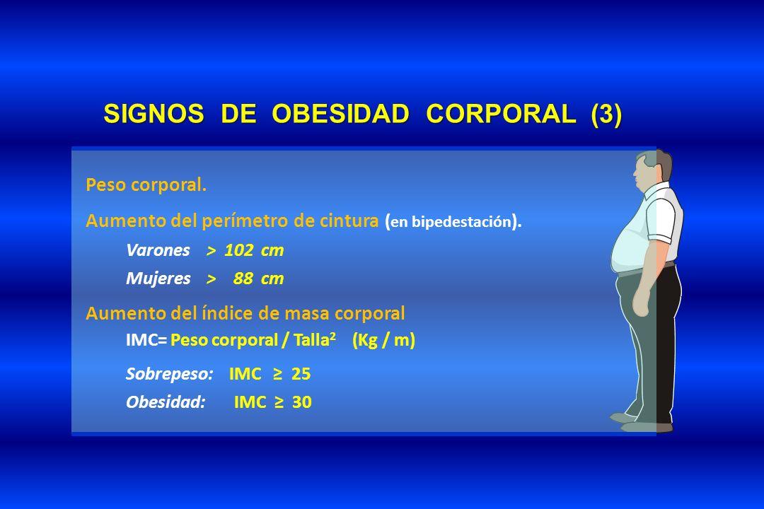 SIGNOS DE OBESIDAD CORPORAL (3)