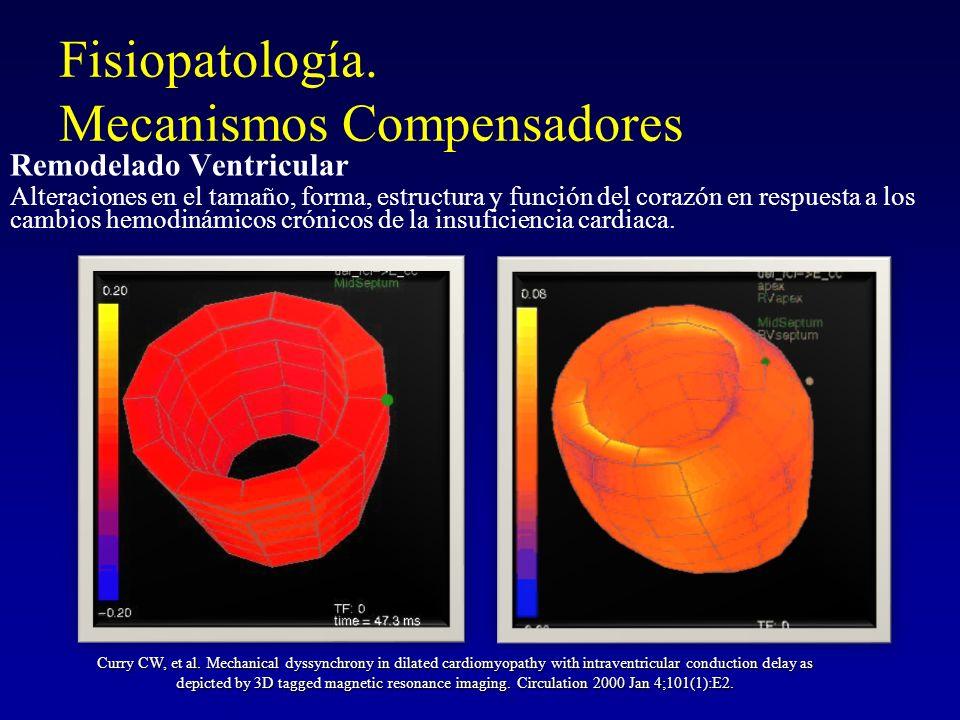 Fisiopatología. Mecanismos Compensadores