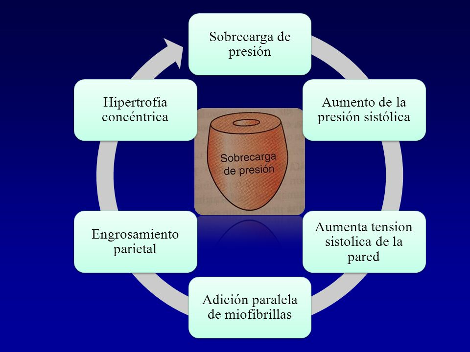 Sobrecarga de presión Aumento de la presión sistólica. Aumenta tension sistolica de la pared. Adición paralela de miofibrillas.