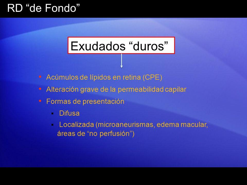 Exudados duros RD de Fondo Acúmulos de lípidos en retina (CPE)