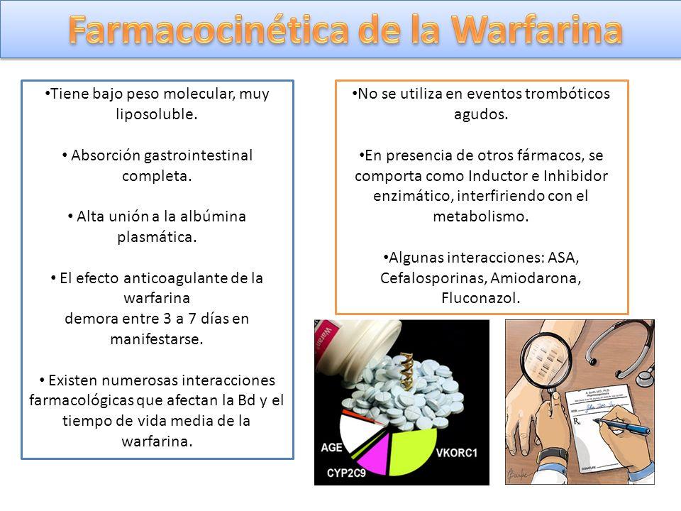 Farmacocinética de la Warfarina