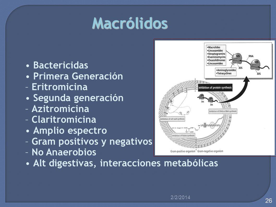 Macrólidos • Bactericidas • Primera Generación – Eritromicina