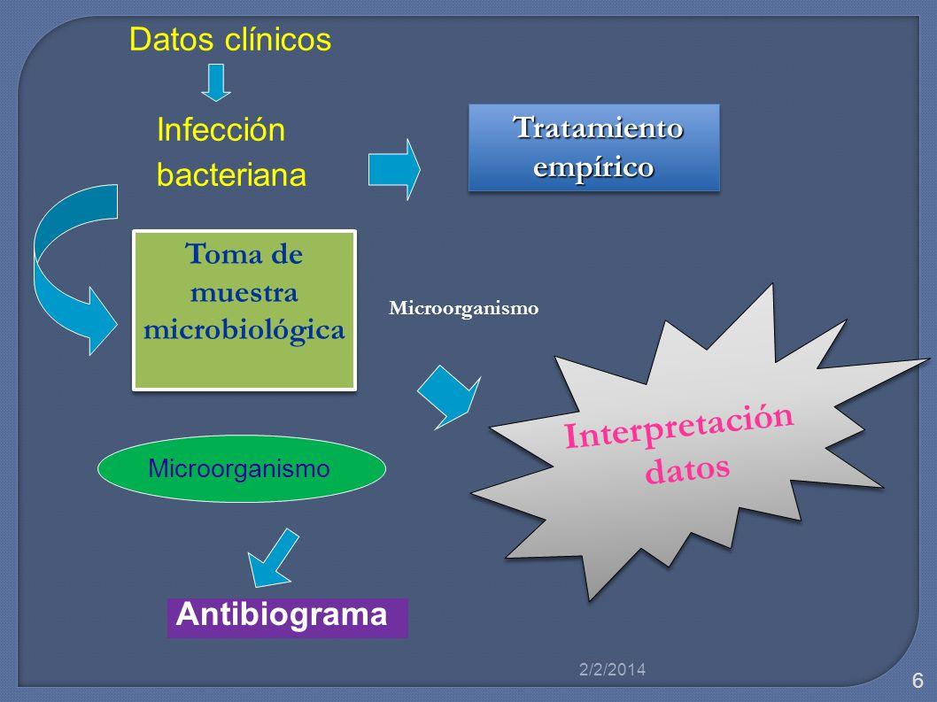 Toma de muestra microbiológica