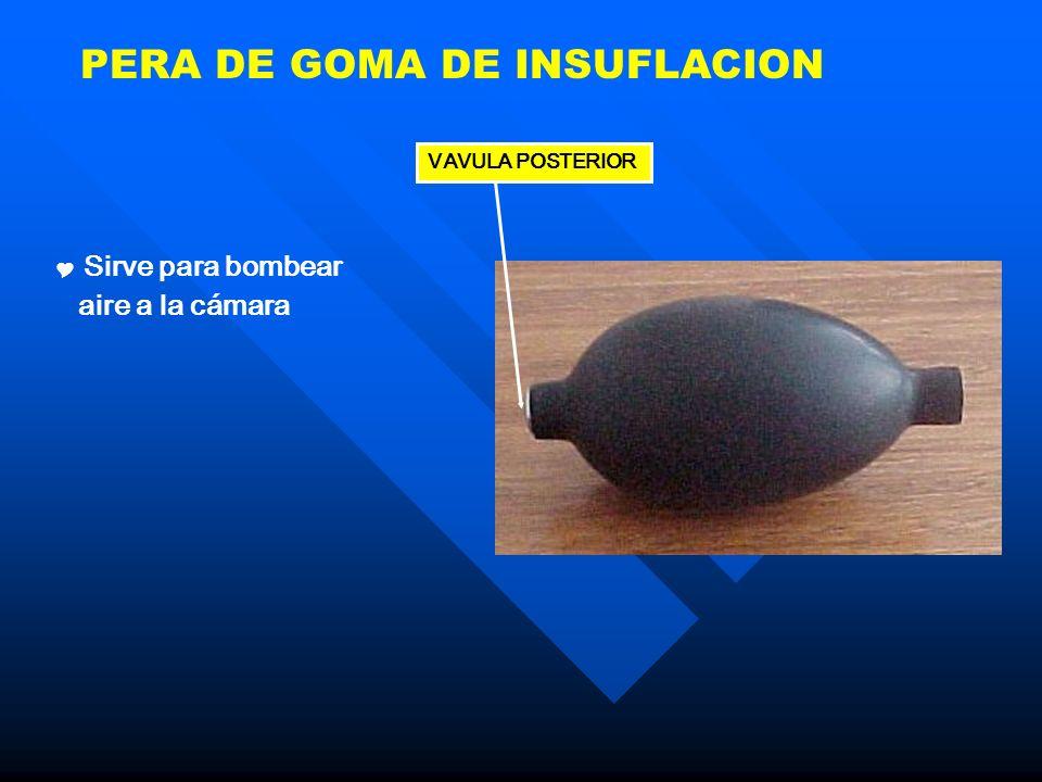 PERA DE GOMA DE INSUFLACION