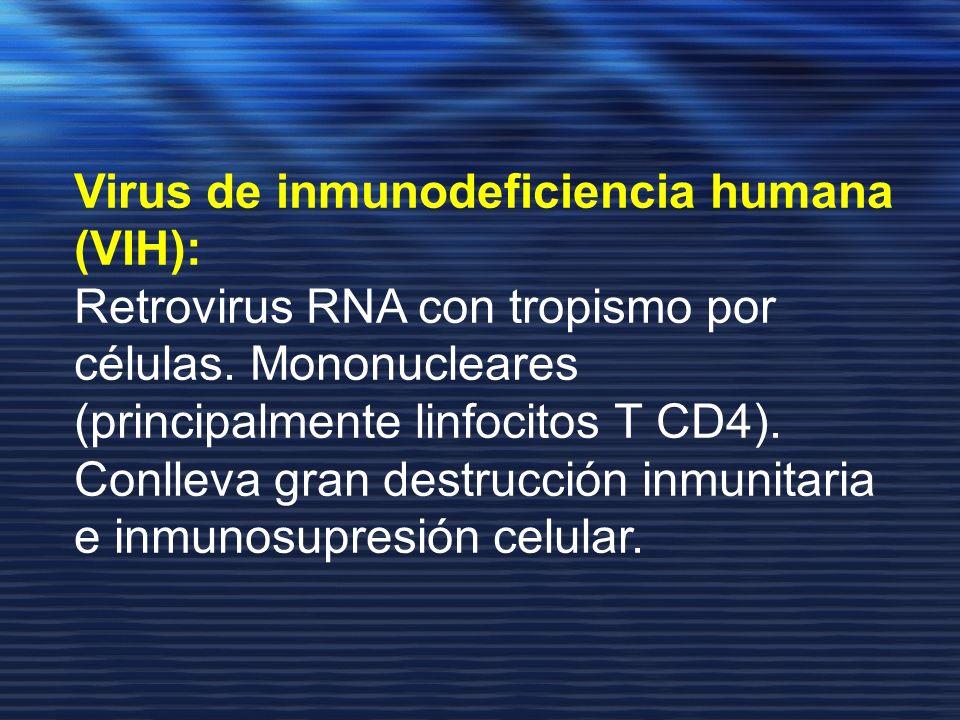 Virus de inmunodeficiencia humana (VIH):
