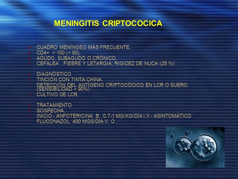 MENINGITIS CRIPTOCOCICA