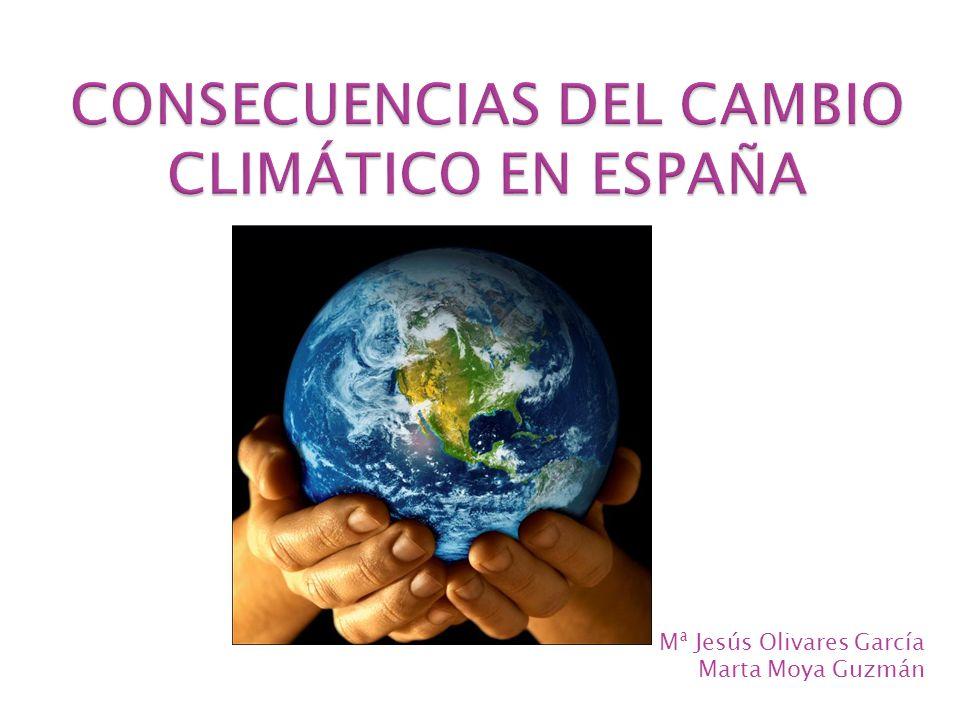 CONSECUENCIAS DEL CAMBIO CLIMÁTICO EN ESPAÑA