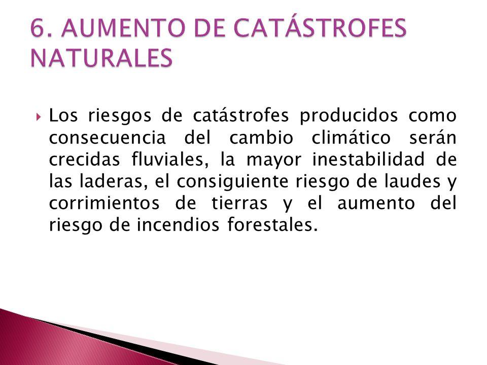 6. AUMENTO DE CATÁSTROFES NATURALES