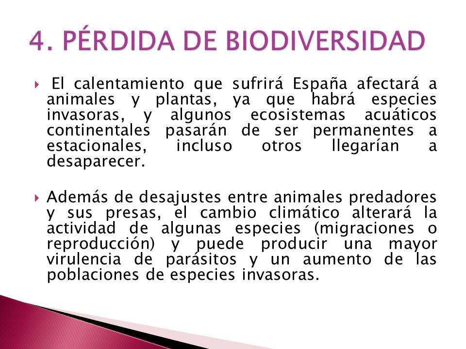 4. PÉRDIDA DE BIODIVERSIDAD