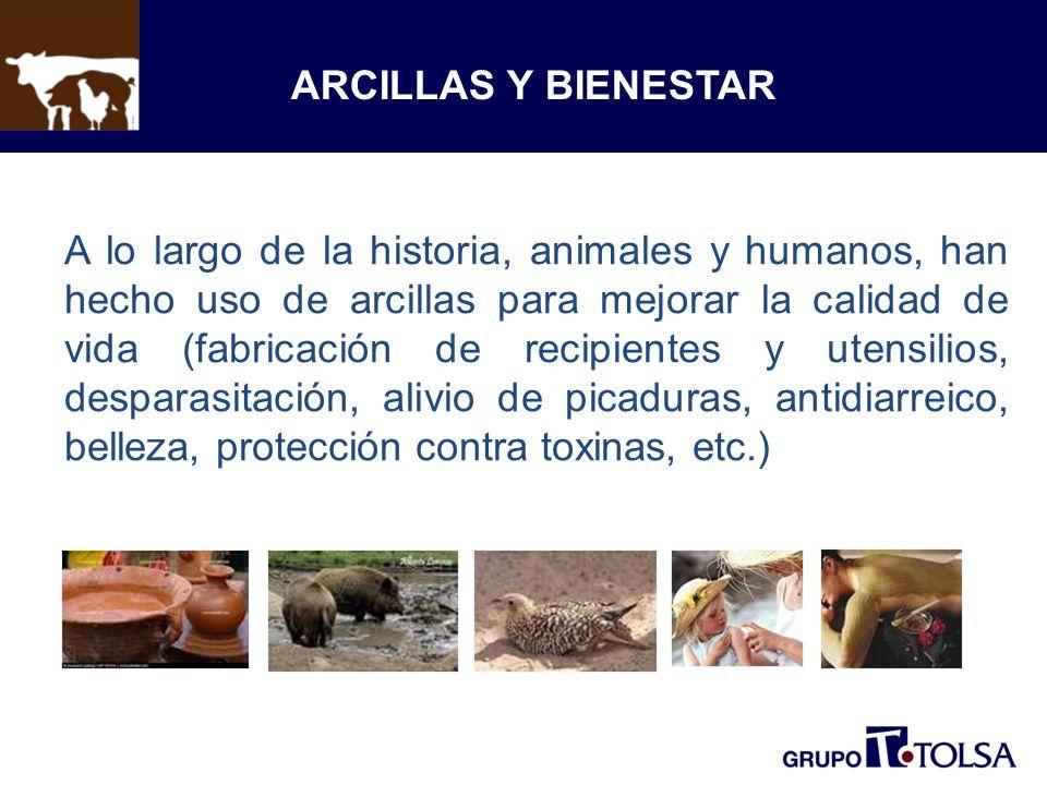 ARCILLAS Y BIENESTAR