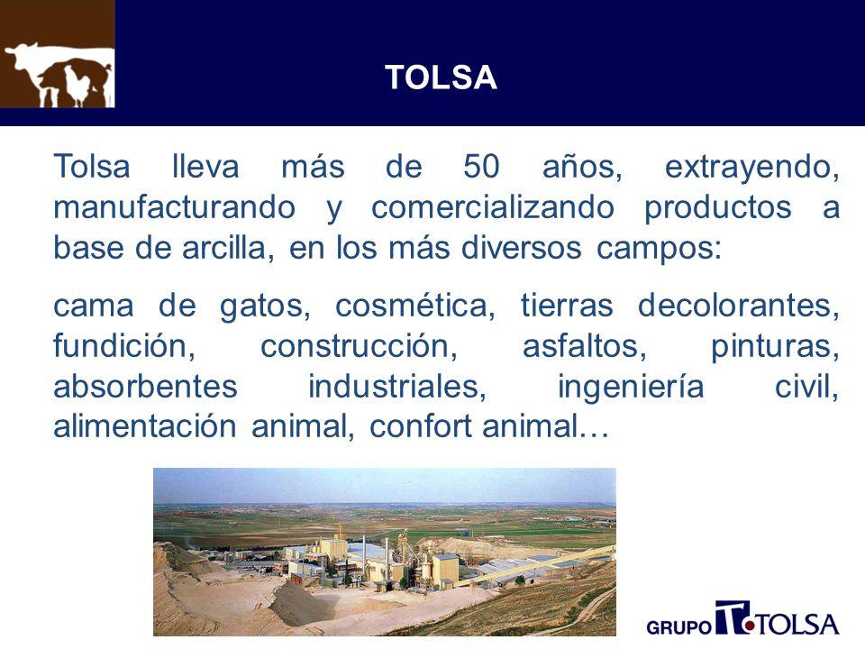 TOLSA Tolsa lleva más de 50 años, extrayendo, manufacturando y comercializando productos a base de arcilla, en los más diversos campos: