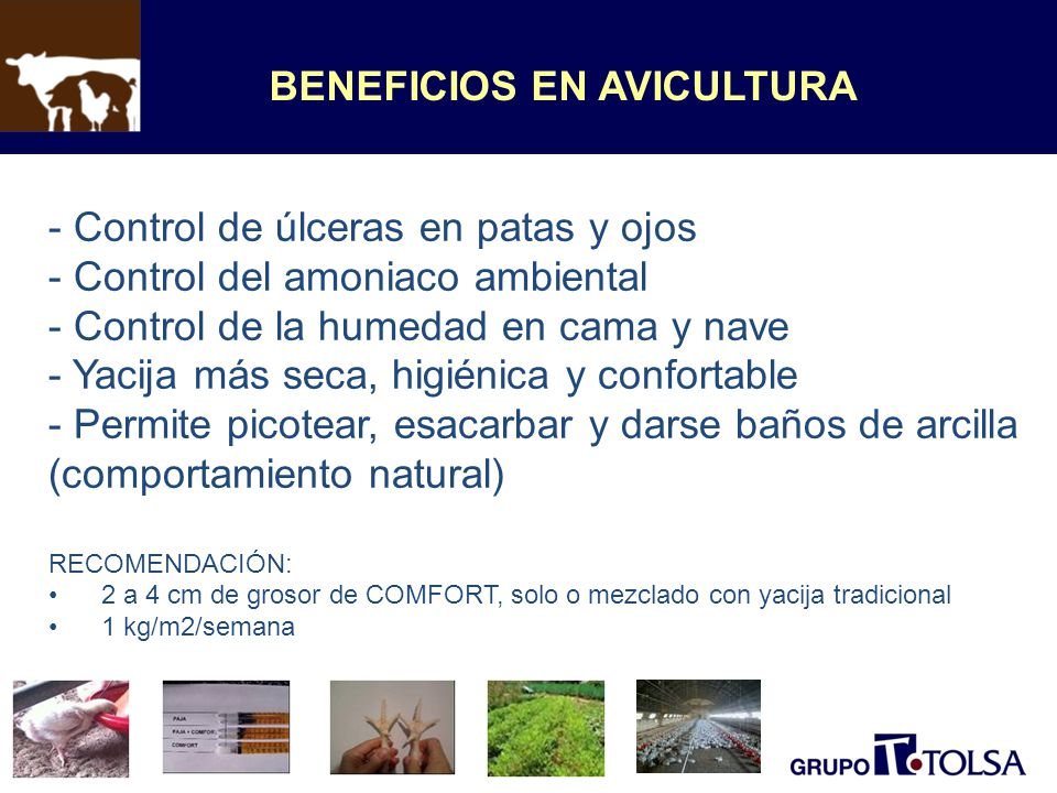 BENEFICIOS EN AVICULTURA