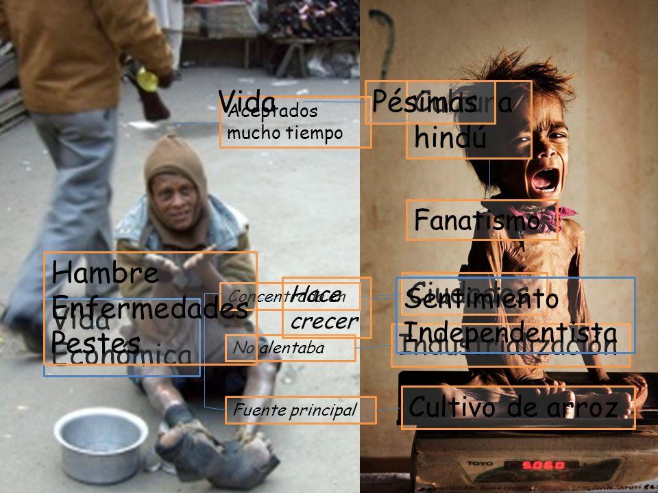 Esperanza Calidad Abusos Pobreza Vida Pésimas Cultura hindú