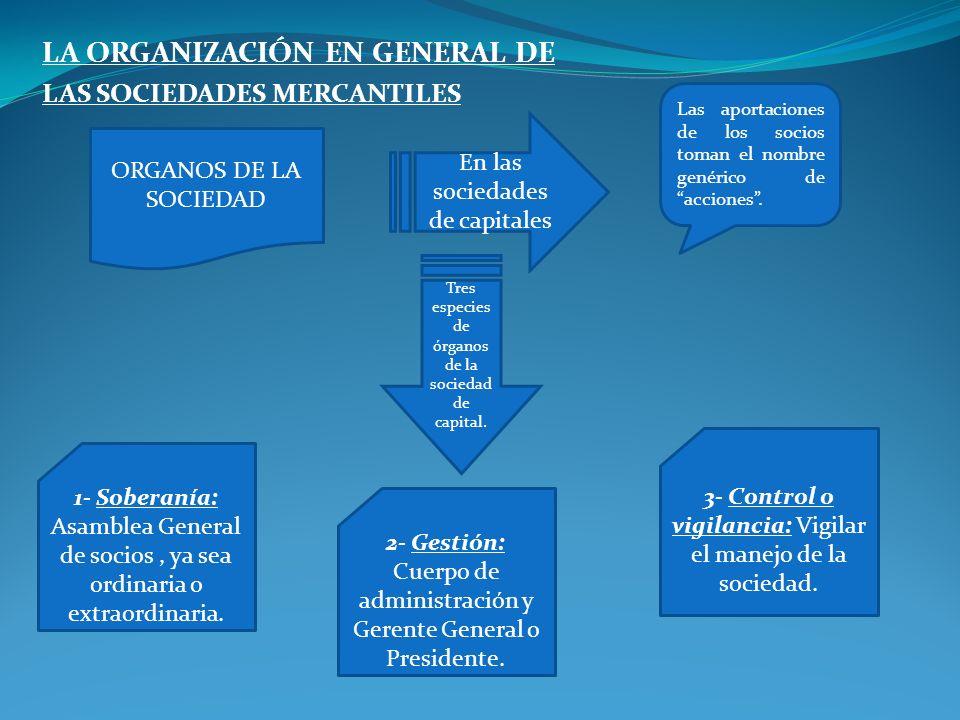 LA ORGANIZACIÓN EN GENERAL DE