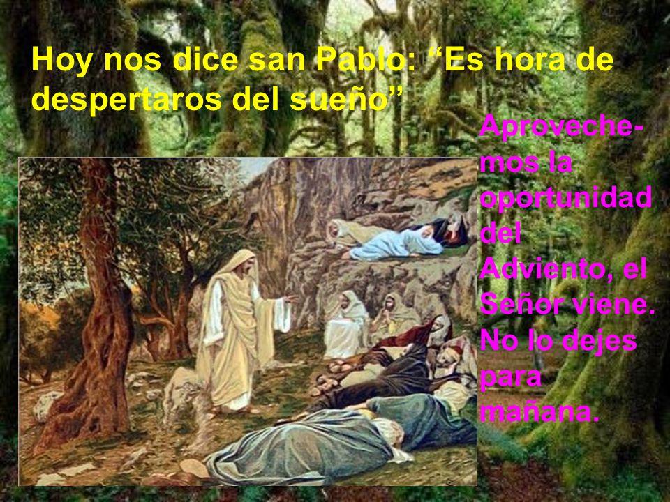 Hoy nos dice san Pablo: Es hora de despertaros del sueño