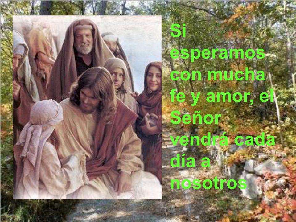 Si esperamos con mucha fe y amor, el Señor vendrá cada día a nosotros.
