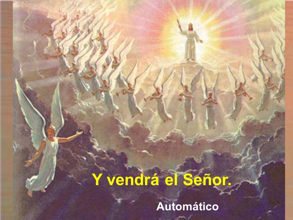 Y vendrá el Señor. Automático
