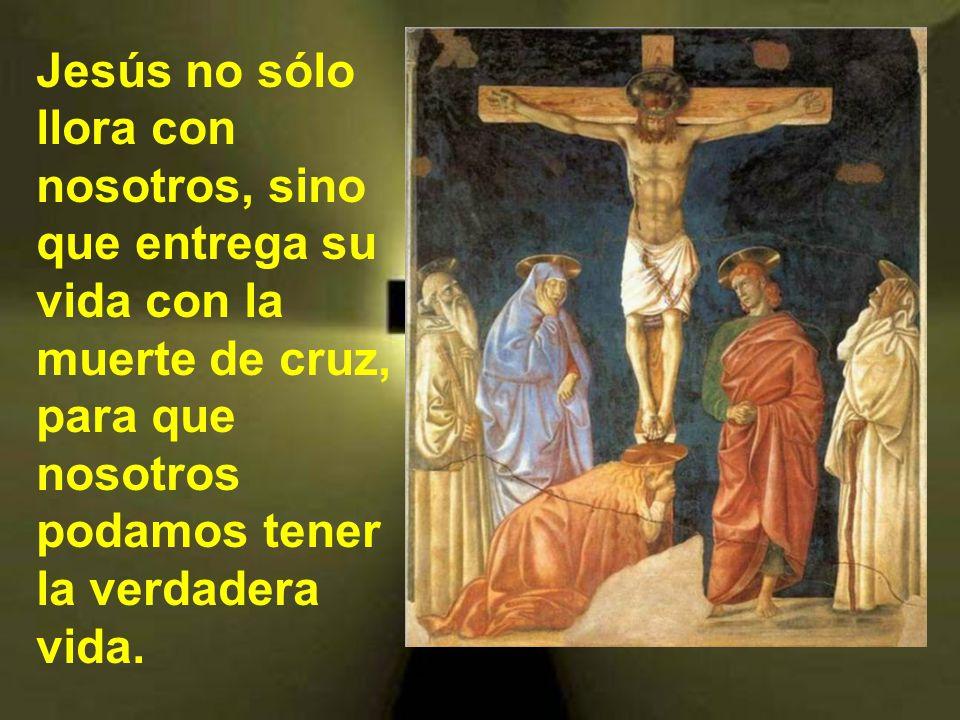 Jesús no sólo llora con nosotros, sino que entrega su vida con la muerte de cruz, para que nosotros podamos tener la verdadera vida.