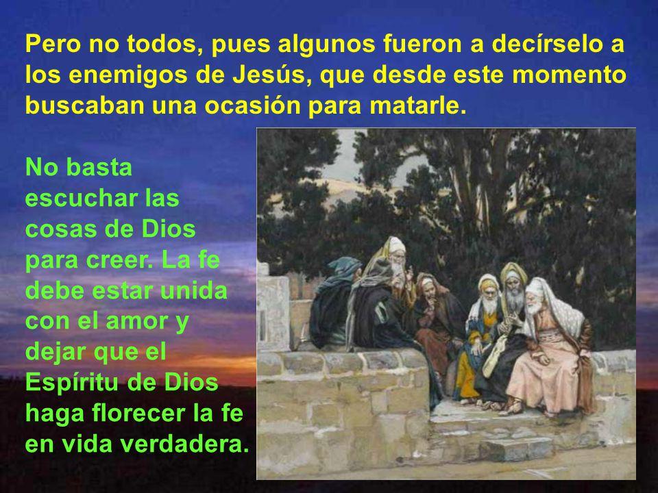 Pero no todos, pues algunos fueron a decírselo a los enemigos de Jesús, que desde este momento buscaban una ocasión para matarle.