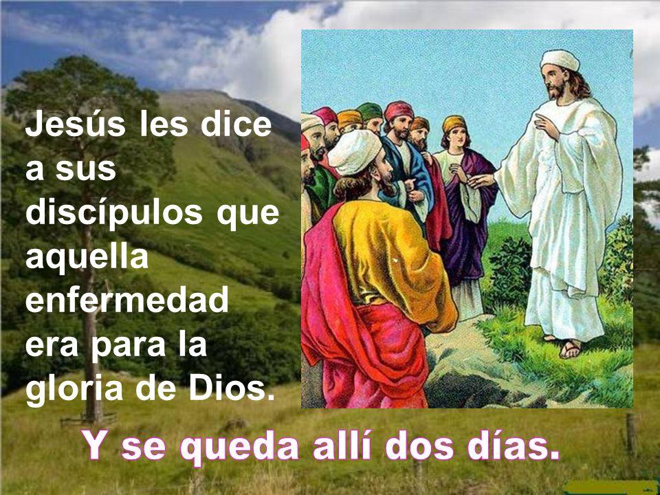 Jesús les dice a sus discípulos que aquella enfermedad era para la gloria de Dios.