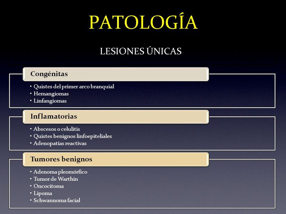 PATOLOGÍA LESIONES ÚNICAS Congénitas Inflamatorias Tumores benignos
