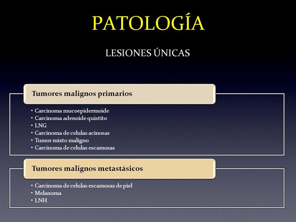 PATOLOGÍA LESIONES ÚNICAS Tumores malignos primarios