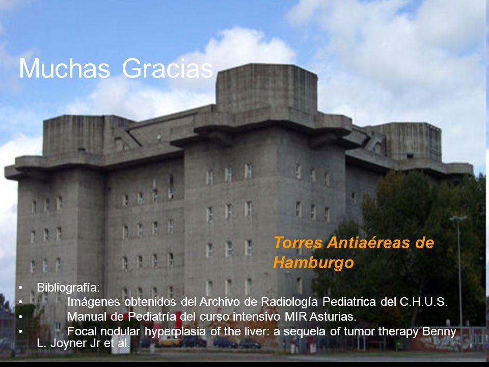 Muchas Gracias Torres Antiaéreas de Hamburgo Bibliografía: