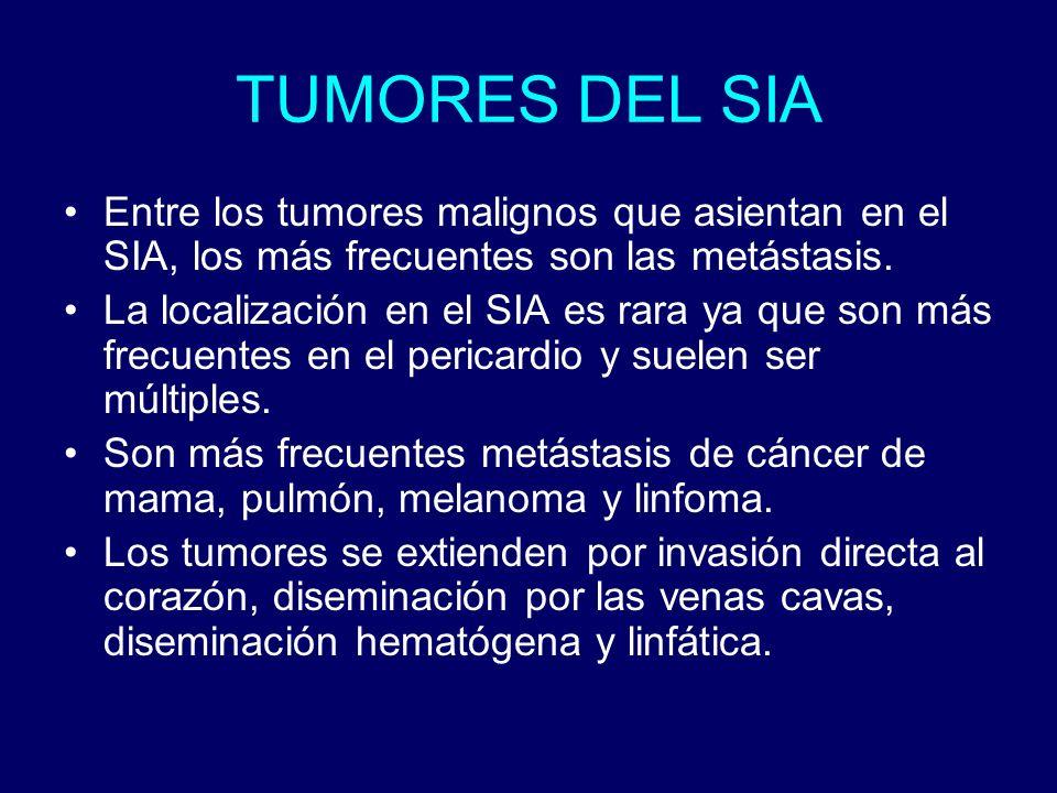 TUMORES DEL SIAEntre los tumores malignos que asientan en el SIA, los más frecuentes son las metástasis.