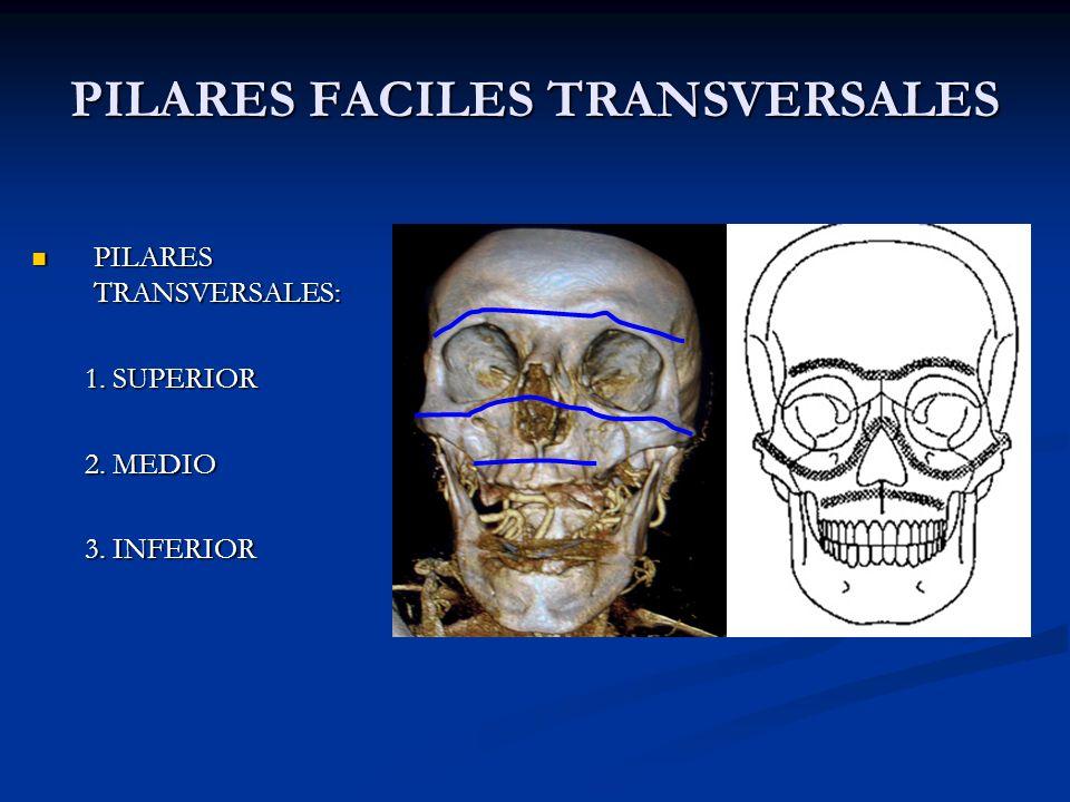 PILARES FACILES TRANSVERSALES