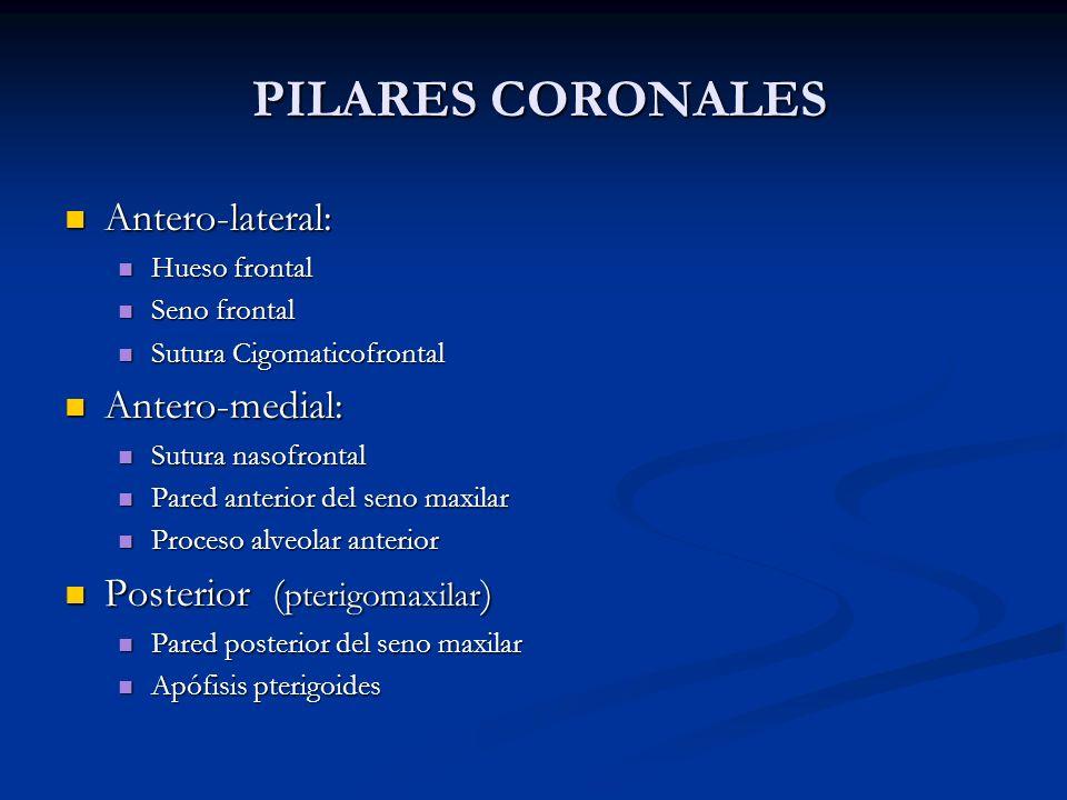 PILARES CORONALES Antero-lateral: Antero-medial: