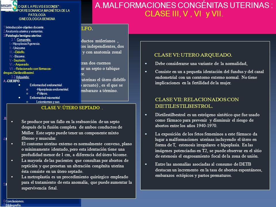 A.MALFORMACIONES CONGÉNITAS UTERINAS : CLASE III, V , VI y VII.