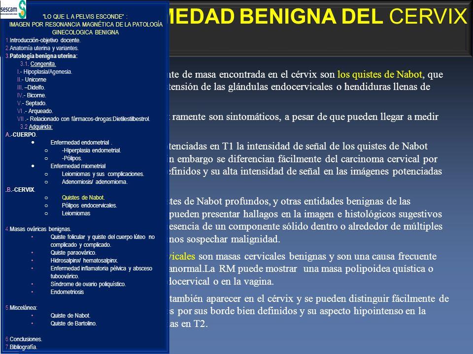 3.2.ENFERMEDAD BENIGNA DEL CERVIX