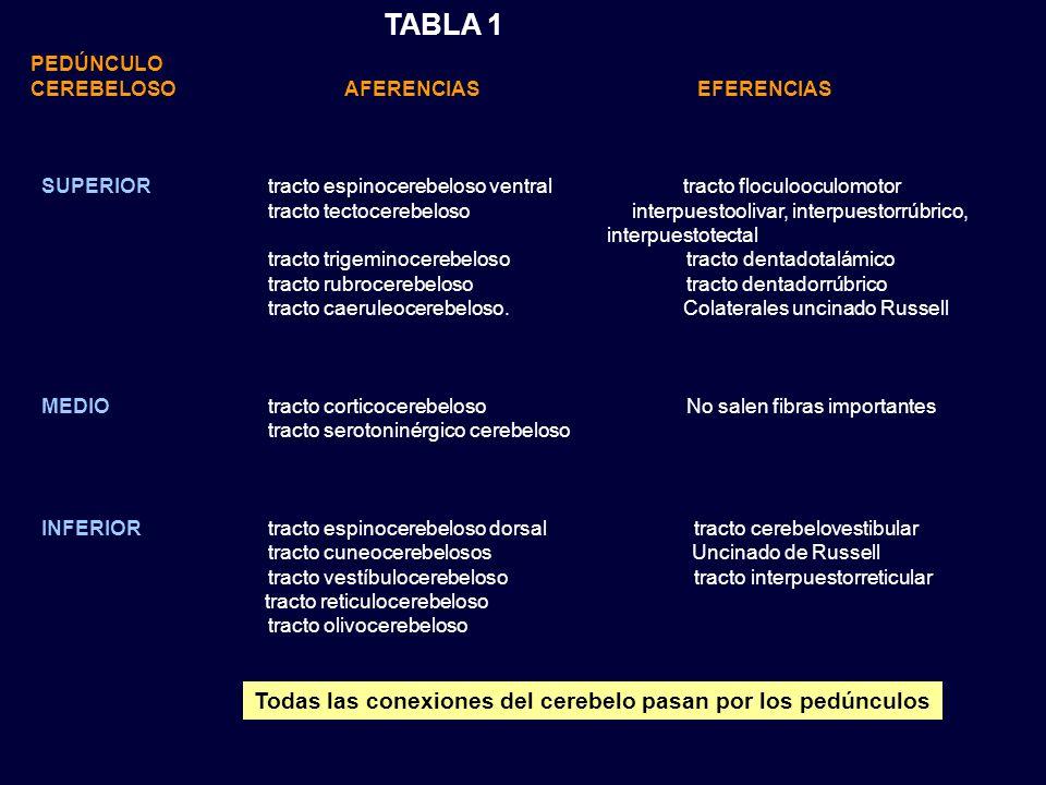 TABLA 1 Todas las conexiones del cerebelo pasan por los pedúnculos