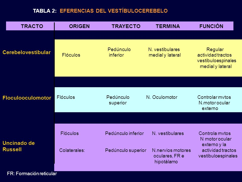 TABLA 2: EFERENCIAS DEL VESTÍBULOCEREBELO