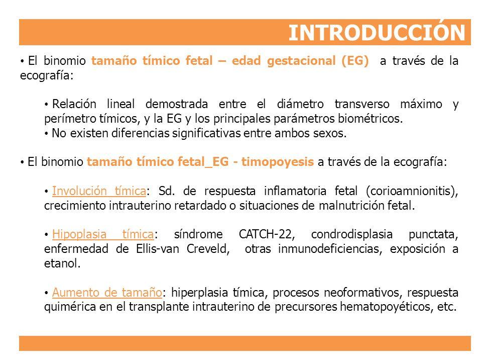 INTRODUCCIÓN El binomio tamaño tímico fetal – edad gestacional (EG) a través de la ecografía: