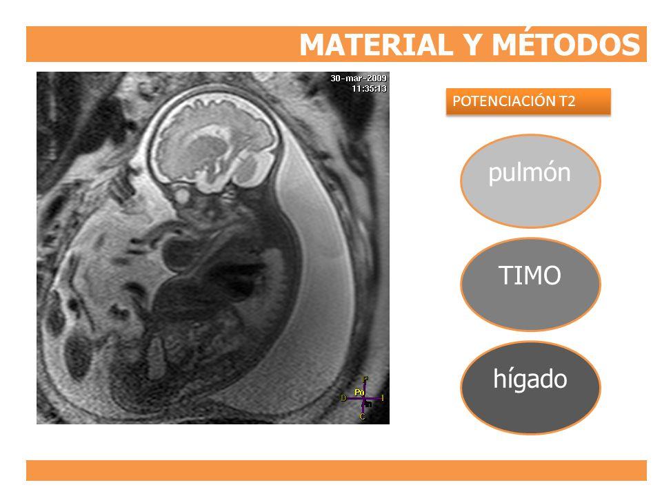 MATERIAL Y MÉTODOS POTENCIACIÓN T2 pulmón TIMO hígado