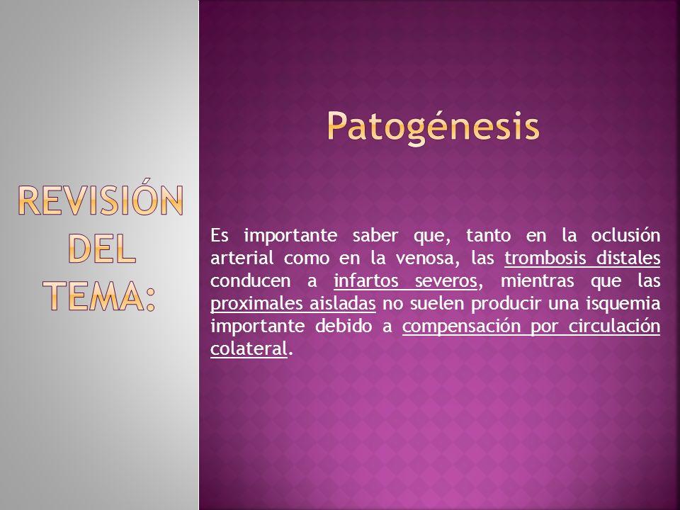 Patogénesis REVISIÓN DEL TEMA: