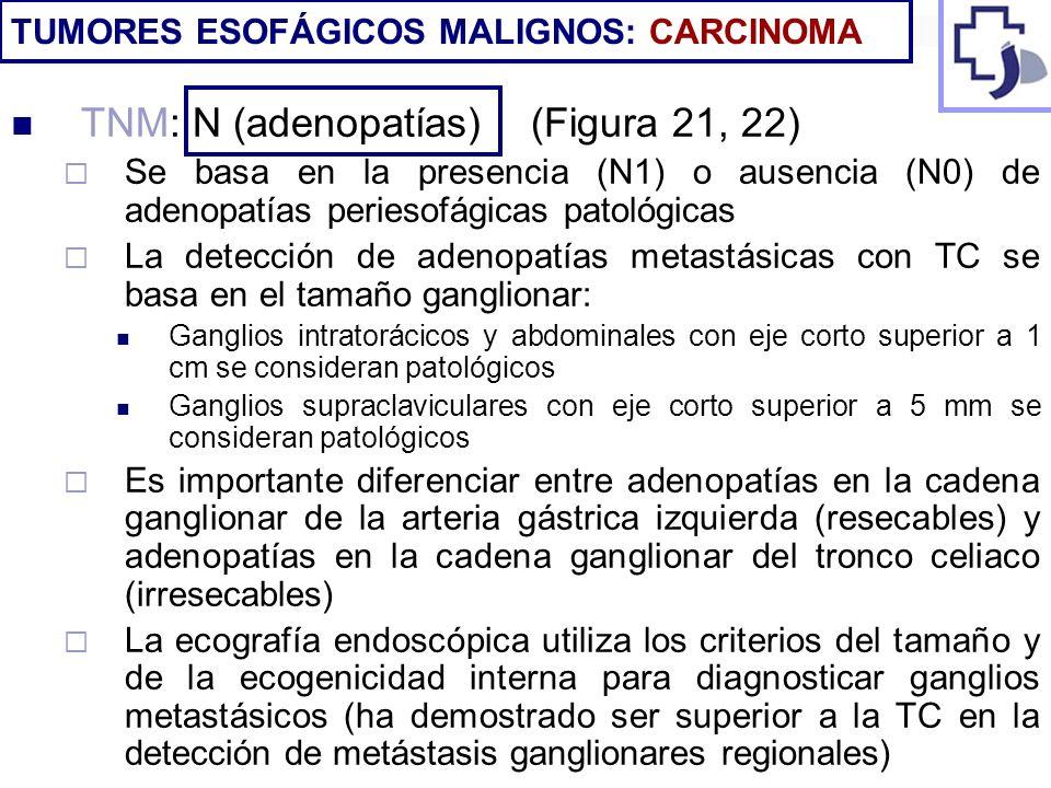TNM: N (adenopatías) (Figura 21, 22)
