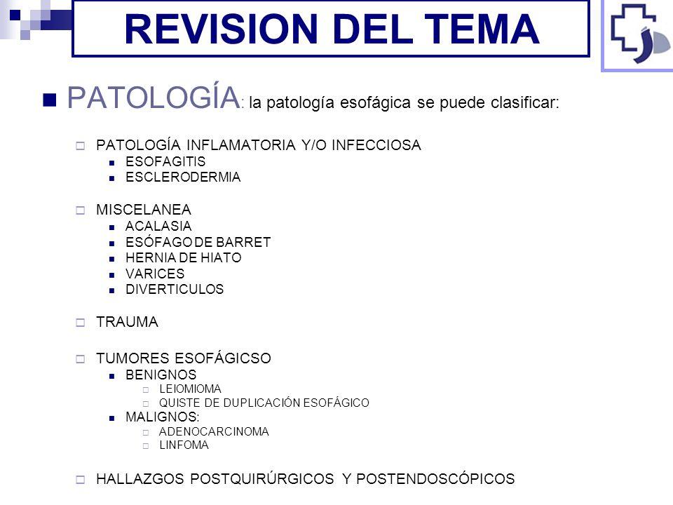 REVISION DEL TEMA PATOLOGÍA: la patología esofágica se puede clasificar: PATOLOGÍA INFLAMATORIA Y/O INFECCIOSA.