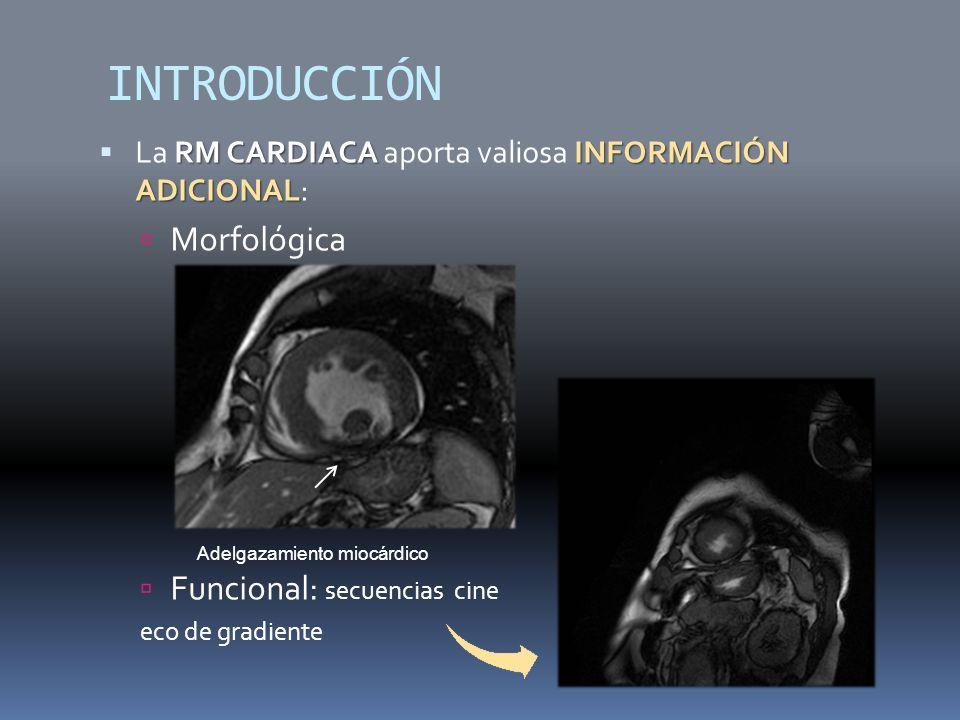 INTRODUCCIÓN Morfológica Funcional: secuencias cine
