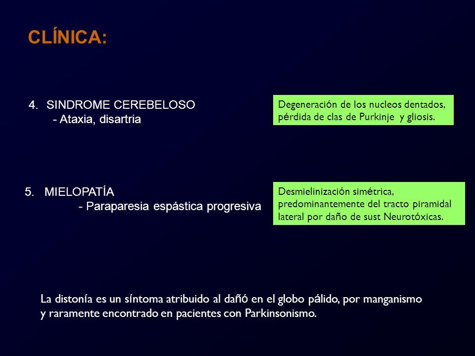 CLÍNICA: SINDROME CEREBELOSO - Ataxia, disartria 5. MIELOPATÍA