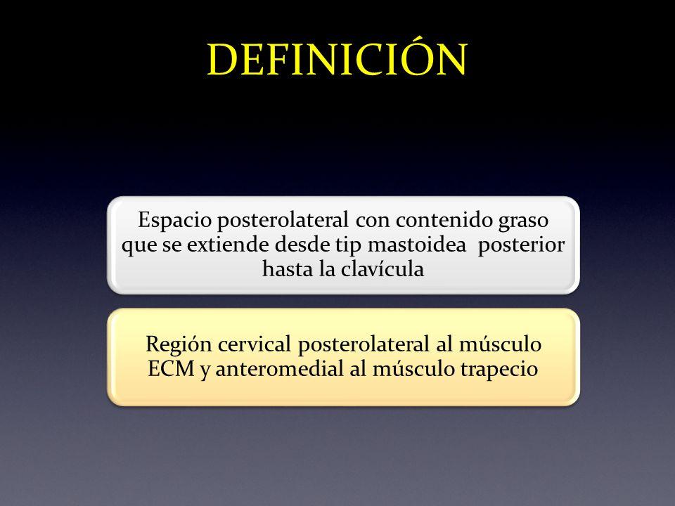 DEFINICIÓN Espacio posterolateral con contenido graso que se extiende desde tip mastoidea posterior hasta la clavícula.