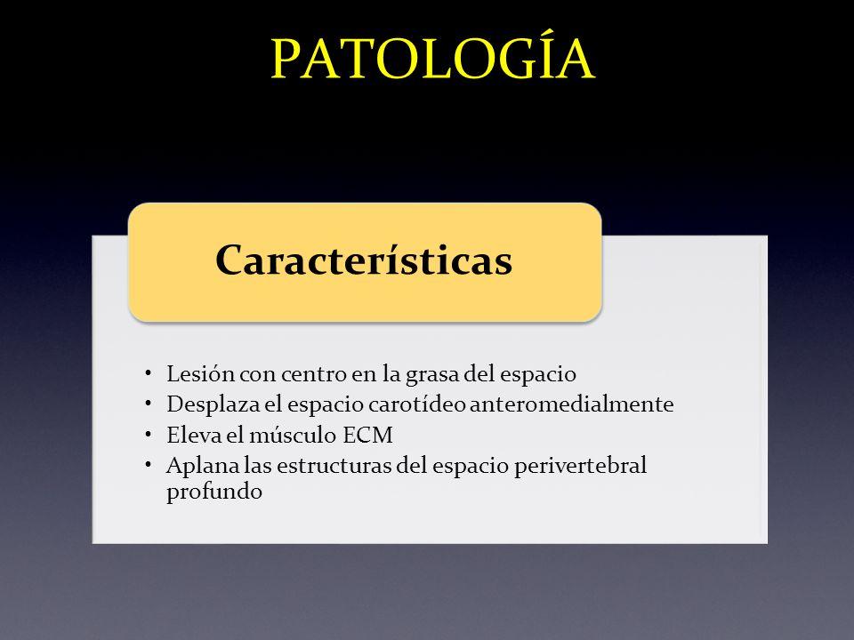 PATOLOGÍA Características Lesión con centro en la grasa del espacio