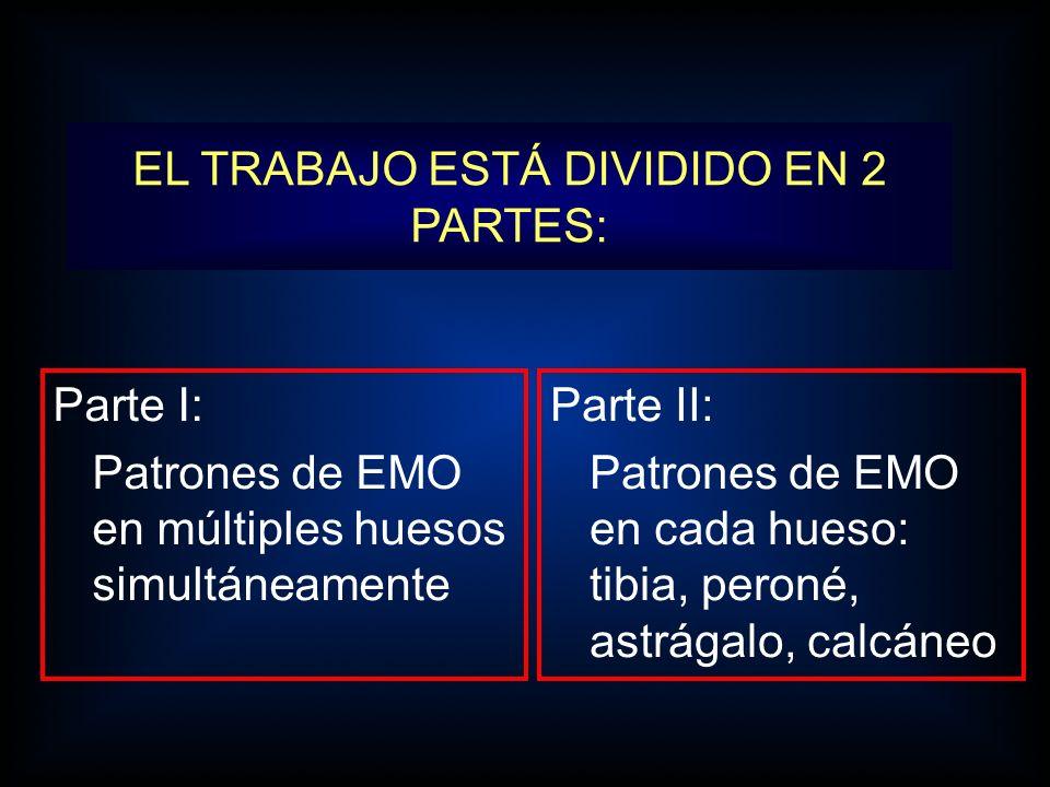 EL TRABAJO ESTÁ DIVIDIDO EN 2 PARTES: