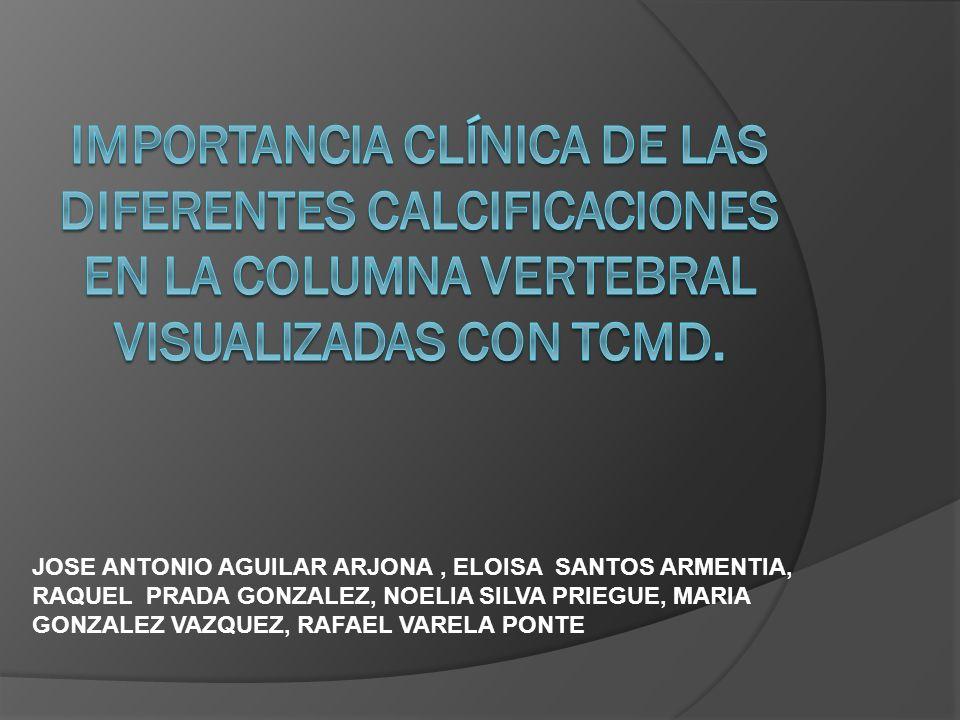 Importancia clínica de las diferentes calcificaciones en la columna vertebral visualizadas con TCMD.