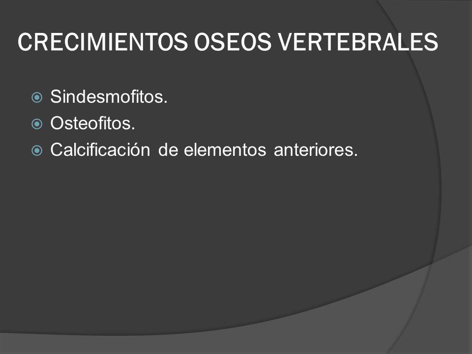 CRECIMIENTOS OSEOS VERTEBRALES