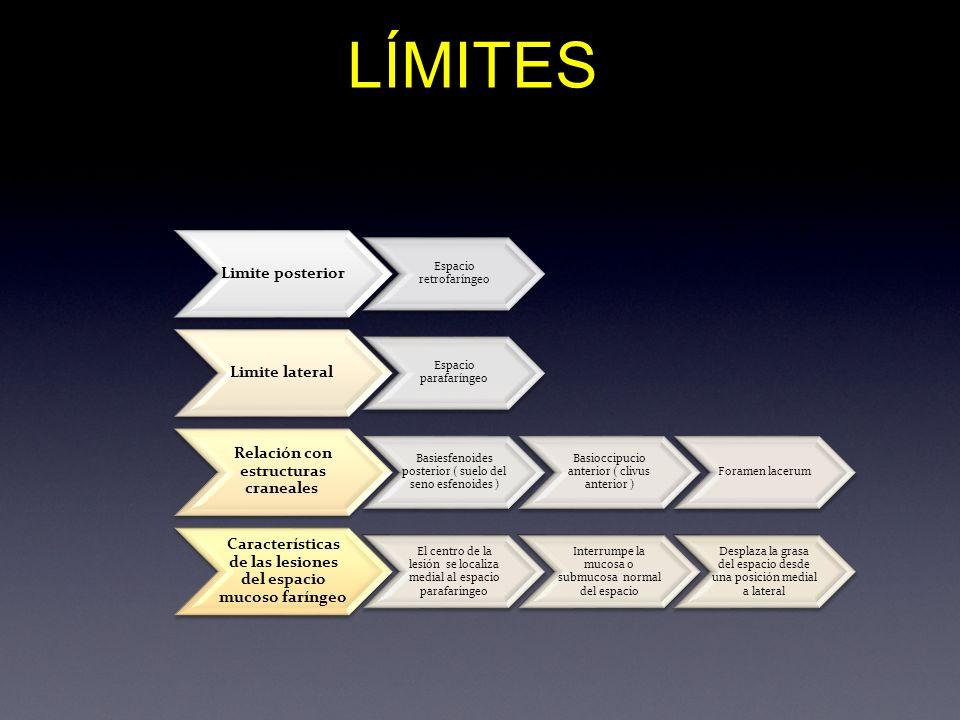 LÍMITES Limite posterior Espacio retrofaríngeo Limite lateral