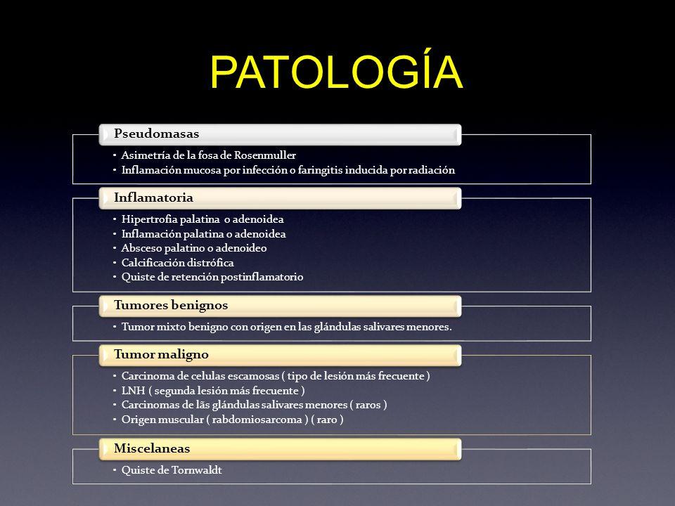 PATOLOGÍA Pseudomasas Inflamatoria Tumores benignos Tumor maligno